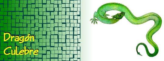 dragon-culebre.jpg