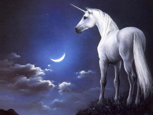 caballos_fantasticos