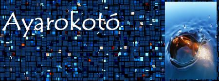 Ayarokotó