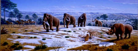 periodo holoceno